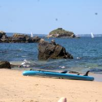 paddle loc.jpg